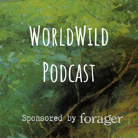 Forager Podcast - Anna Lewington - An Etnobotanist's View